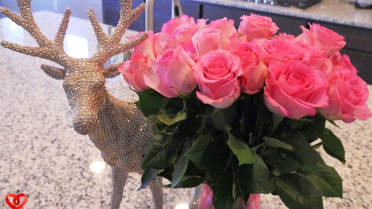 AmyLockheart - Instant Happy Roses